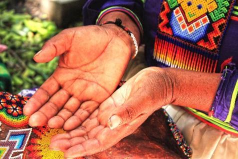 Rosita: Su madre le enseño a hacer artesanías. Dice que va de generación en generación y las hace para alimentar a su familia. Es de Nayarit y lleva una semana en Puebla, además tiene 38 años y a los 20 años comenzó a visitar distintos estados para vender su trabajo.